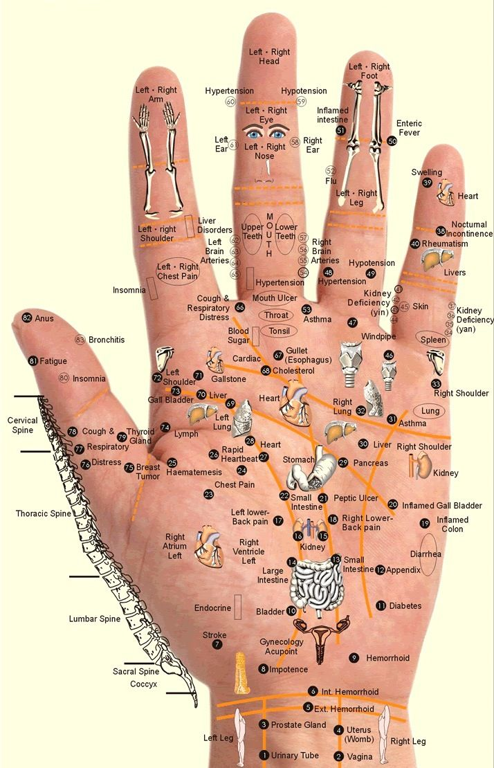 Acupressure points located on the hand. Using acupressure to stop hypertension.