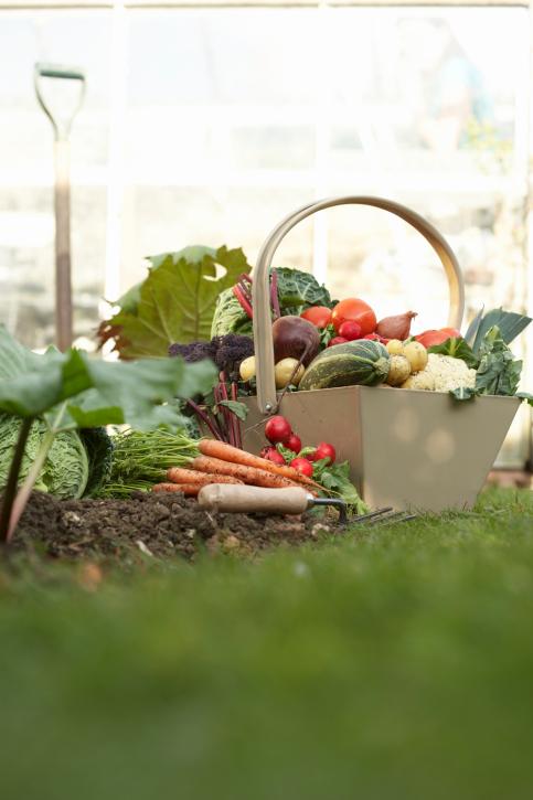 Garden Produce. https://www.info-on-high-blood-pressure.com/disease-prevention.html