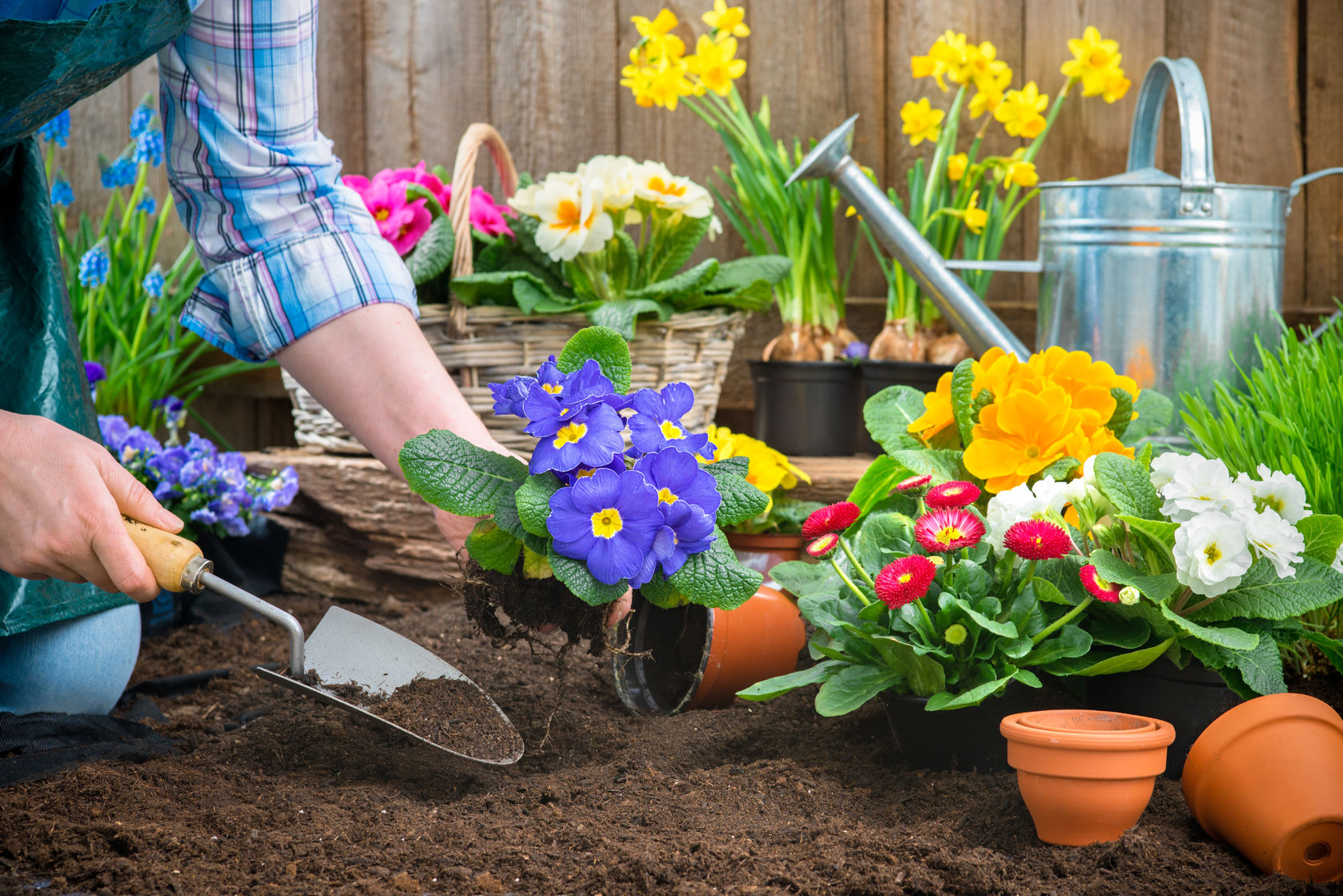 Garden Preparation  https://www.info-on-high-blood-pressure.com/Health-Benefits-Of-Gardening.html
