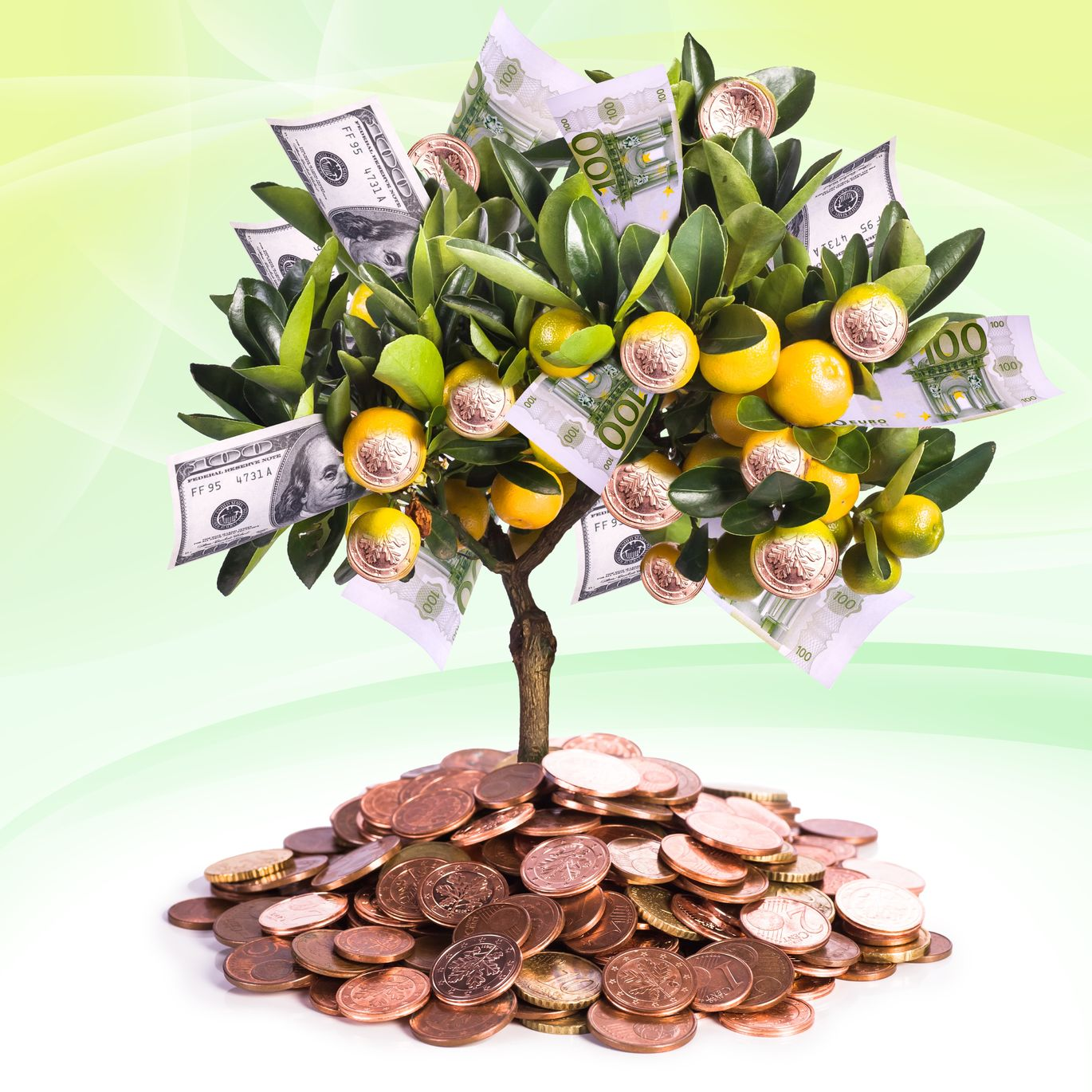 Money Tree - Financial Health And High Blood Pressure  https://www.info-on-high-blood-pressure.com/Financial-Health.html