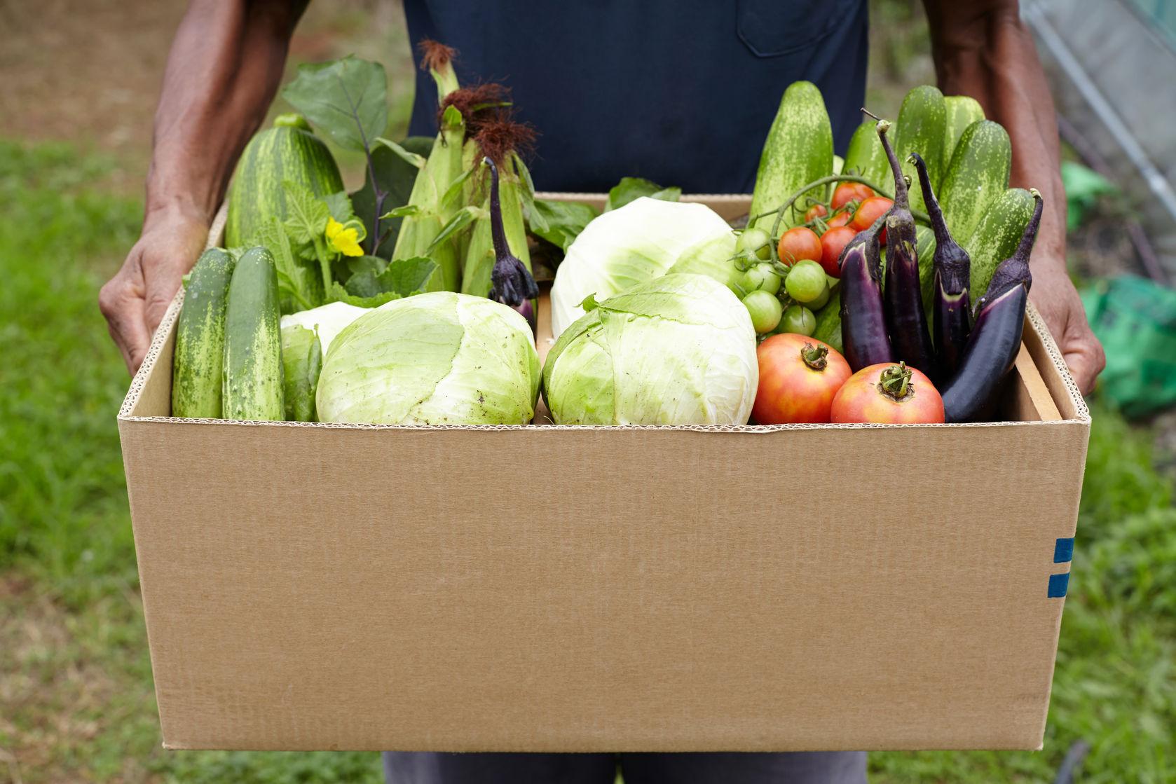 Produce from vegetable garden  https://www.info-on-high-blood-pressure.com/Health-Benefits-Of-Gardening.html
