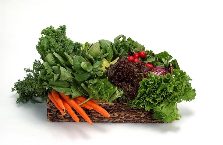 Assorted vegetables. https://www.info-on-high-blood-pressure.com/mindful-eating.html